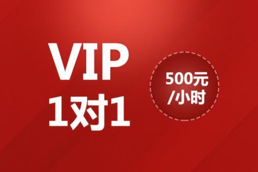 VIP1对1